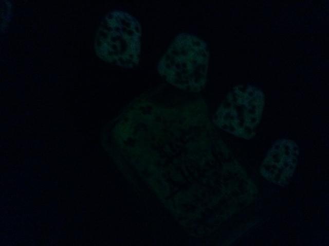 APWBD Dark