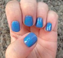 Blue Boughs