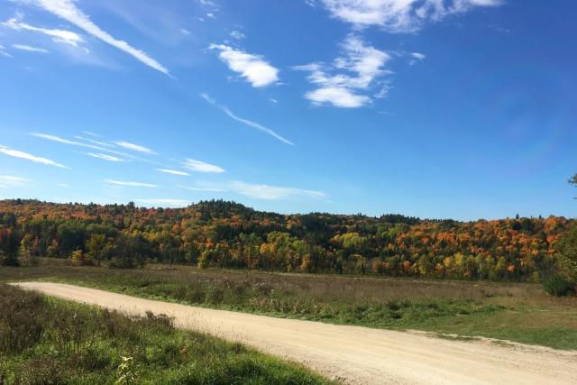gatineau-hills-1