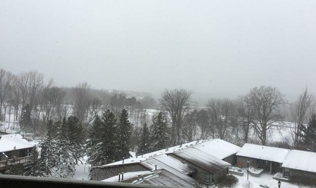 stupid-snow