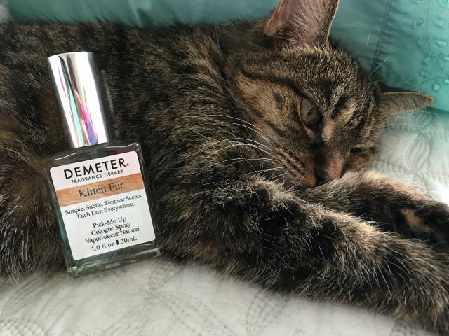 Demeter Kitten Fur Pic