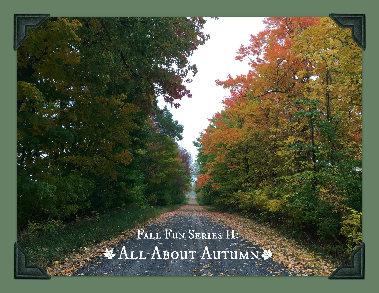 Fall Fun Series II Photo