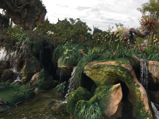 Pandoran Pond